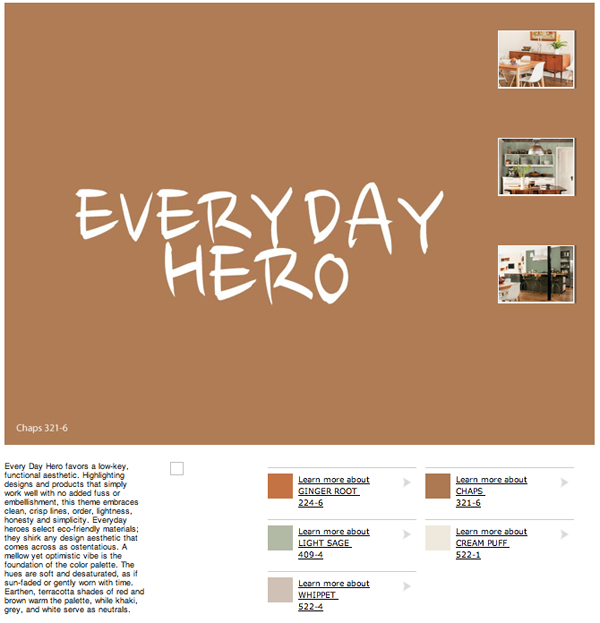 pp 2013 everyday hero